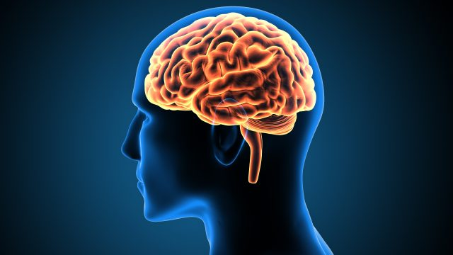 addiction-affects-the-brain-disease-SUD-dopamine-drugs-alcohol