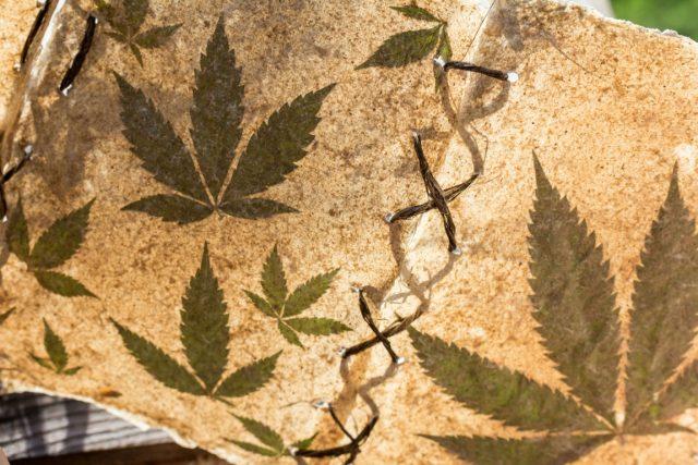 industrial-hemp-cannabis-plant-smoking-marijuana-Christianity